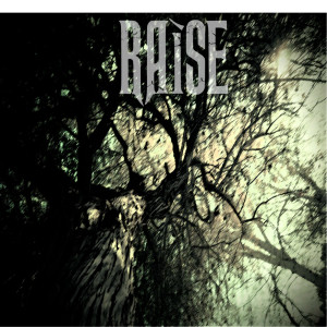 Raise album cover web